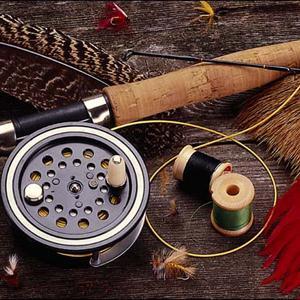 Охотничьи и рыболовные магазины Чагоды